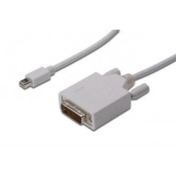 Kabel DisplayPort Assmann DP mini/M - DVI-D (24+1) /M, 3m